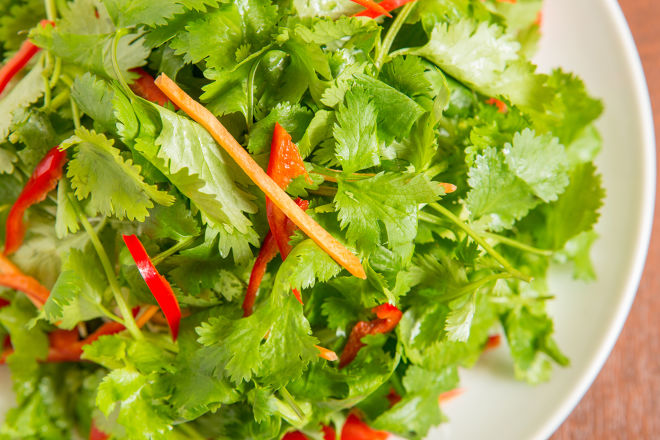 本格タイ料理バル プアン_9