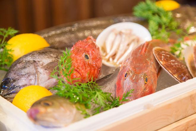 Fish House Mario Bocca溝ノ口_15