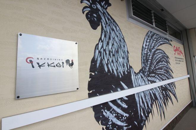 鶏焼き肉ダイニング イッケイ_20