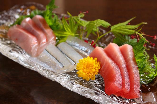 旬魚肴菜 和味_10
