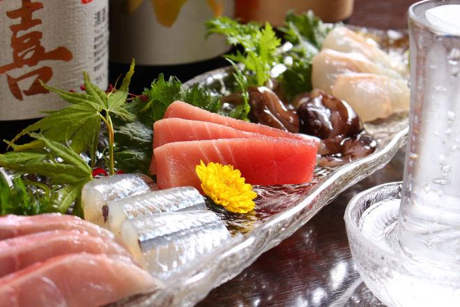 旬魚肴菜 和味_11