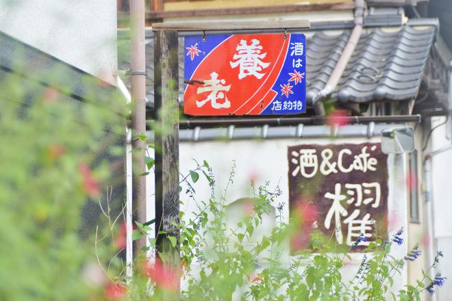 酒蔵櫂_25