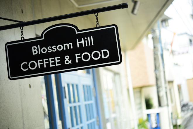 Blossom Hill_21