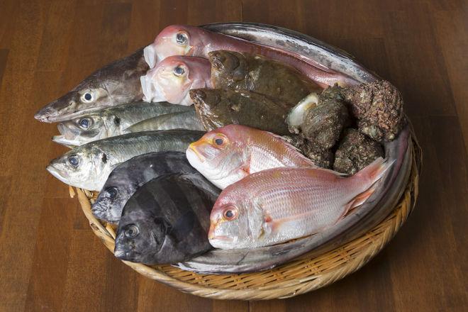 魚旬 本店_12