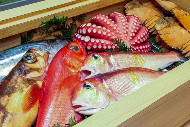 活魚料理×魚串 ほそみ_12