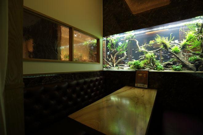 AQUARIUM CAFE Affinity_25
