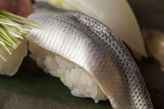 銀座 柳寿司 三代目_16
