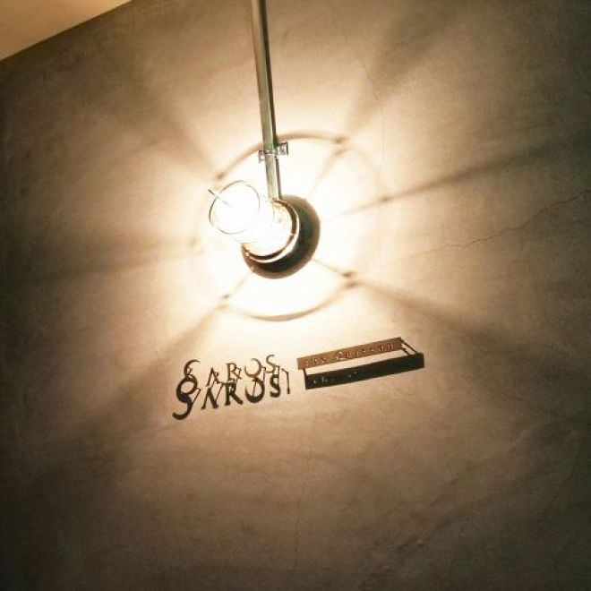 SAROS.the Quisson _1