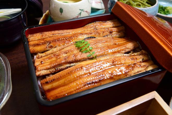 日本料理専門店 魚長_7