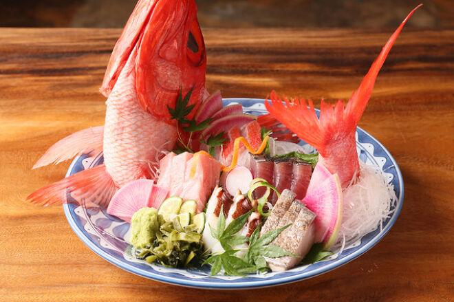 鮮魚 日本酒 えどわん_19